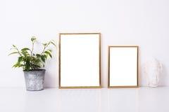 Modell mit zwei goldenes Rahmen Lizenzfreie Stockfotografie