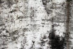 Modell och bakgrund Gammal smutsig vägg eller grungebakgrund Arkivfoton