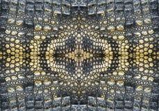 Modell och textur av krokodilen Arkivfoton
