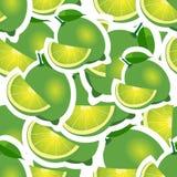 modell olika störst format för limefrukt och för sidor Royaltyfri Foto