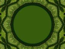 Modell på gröna sidor Royaltyfria Bilder