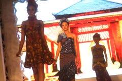 Modell på modeshowen som bär den kinesiska batiksamlingen Arkivbild