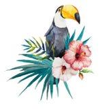 Modell som är tropisk, vattenfärg Royaltyfri Bild