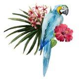 Modell som är tropisk, vattenfärg Royaltyfria Bilder