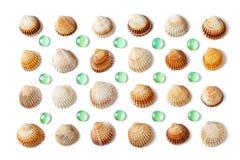 Modell som göras av isolerade skal och gröna glass pärlor på vit b Royaltyfri Fotografi