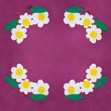 Modell som göras från barnhälsningkort med tusensköna tre och gröna sidor från papper för att marschera 8 eller mors dag på viole royaltyfri bild
