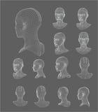 Modell-Vektorillustration Wireframe-Kopfes 3d lizenzfreie abbildung