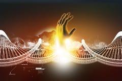 Modell verdrehter Chrom DNA-Kette und -hand lizenzfreie abbildung