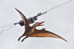 Modell von pteranodon stockfotografie