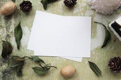 Modellbegreppet med mandarines och sörjer kottar Fotografering för Bildbyråer
