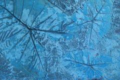 Modellen av bladet stämplade på blå pastellfärgad konkret trottoar för dekorerar gångbanor i trädgården royaltyfri illustrationer
