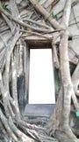 Modellen av dörren och fönstret för tegelsten för mall för mellanrumsfrikändram som den forntida omger med trädet, rotar Fotografering för Bildbyråer