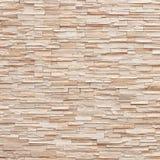 Modellen av dekorativt kritiserar yttersida för stenväggen Arkivbild