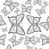 Modellen av fjärilar Royaltyfri Foto