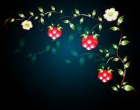 Modellen av härliga frukter blommar på en svart grund illustration för diagram för fyrverkerier eps10 för bakgrund svart Royaltyfri Foto