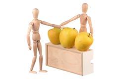 Modellen en appelen royalty-vrije stock foto