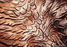Modellen skrapade in i brun lera Arkivbilder