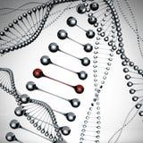 Modellen van de DNAmolecule royalty-vrije illustratie