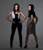modeller Royaltyfri Fotografi