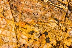 Modeller av sten 7 royaltyfria bilder