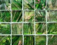 Modeller efterapar naturen av tegelplattaväggen Fotografering för Bildbyråer