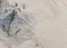 Modeller för havssand- och färgpulverfärg arkivfoto