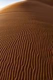 Modeller för sanddyn Arkivbild