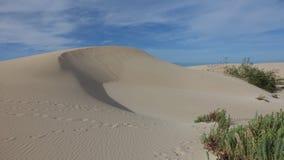 Modeller i sanden i det naturligt parkerar i Corralejo Fuerteventura Spanien fotografering för bildbyråer