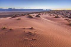 Modeller i sanden på dyn Royaltyfria Foton