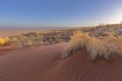 Modeller i sanden på dyn arkivfoton