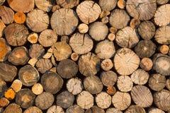Modeller och texturer av trä arkivbild