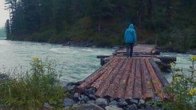 Modellera den utsläppta mannen som fotvandrar på journalfotbron över floden in i till och med den tjocka skogbergfloden Bro flick lager videofilmer