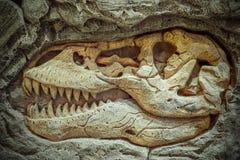 Modellera det Dinosaur fossilet, dinosaurier är en olik grupp av reptilar av claden Dinosauria royaltyfria foton