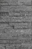 Modellgrå färgfärg av modern stil Fotografering för Bildbyråer