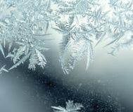 Modelli del gelo Fotografia Stock Libera da Diritti