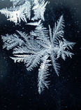 Modelli del gelo Fotografia Stock