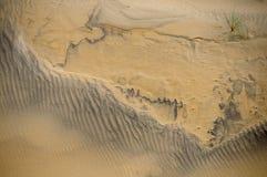 Modelli della sabbia Immagine Stock