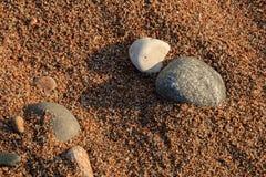 Modelli della spiaggia Fotografia Stock