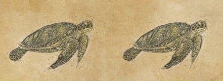 Modelli delle insegne con nuoto della tartaruga del ‹del †del ‹del †del mare Fotografia Stock