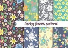 Modelli di fiori della primavera Insieme dei modelli senza cuciture di vettore Fotografia Stock