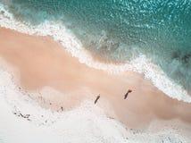 Modelli di marea ondulati di primo mattino Fotografie Stock Libere da Diritti