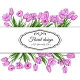 Modelli floreali della molla dei tulipani rosa disegnati a mano Elementi per progettazione di pasqua e romantica, annunci, cartol illustrazione di stock