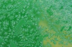 Modelli gelidi di inverno Fotografia Stock