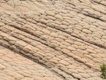 Modelli geometrici di erosione su arenaria; scena intorno all'area nazionale di conservazione delle scogliere rosse sulle colline Immagine Stock Libera da Diritti