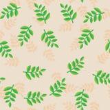 Modelli i rami della pianta con le foglie verdi su fondo beige La pianta beige e verde si ramifica con fogliame senza cuciture Fotografia Stock Libera da Diritti