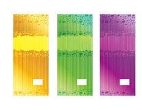 Modelli naturali dell'etichetta del sapone Fotografia Stock Libera da Diritti
