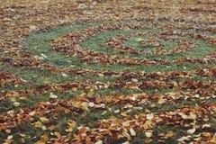 Modelli rotondi fatti con le foglie di autunno Immagini Stock Libere da Diritti