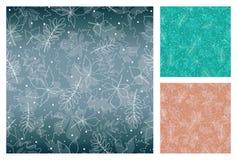 Modelli senza cuciture con il fondo differente di colori Contorni delle foglie, delle siluette trasparenti delle foglie di autunn Fotografie Stock Libere da Diritti