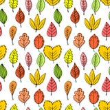 Modelli senza cuciture delle foglie di autunno Opuscoli ed elementi eleganti e bei della pianta royalty illustrazione gratis