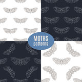 Modelli senza cuciture di falco di vettore disegnato a mano del lepidottero determinati Fotografie Stock Libere da Diritti